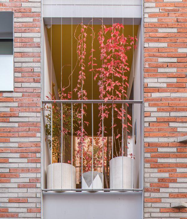 Photo_Yooseop Song_Stairs with Plants (4)_Fall season_WEB